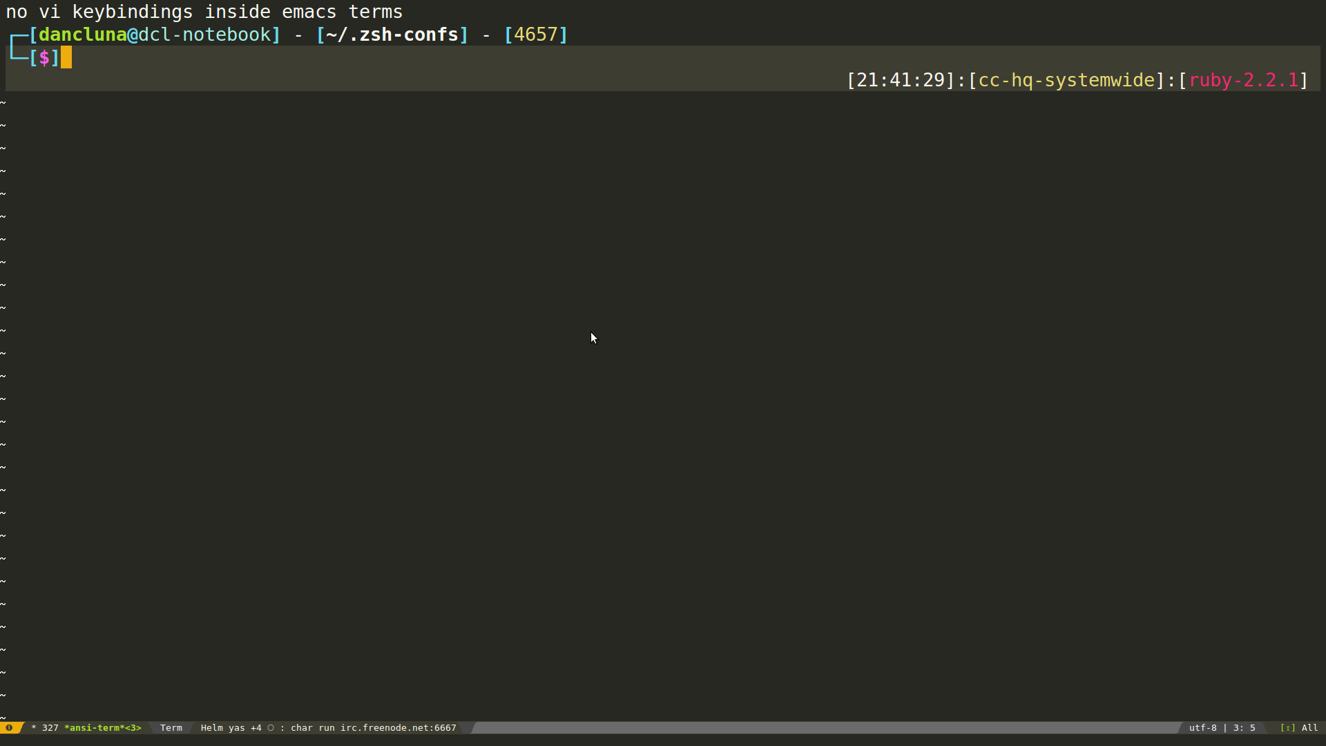 yay for working ansi-term