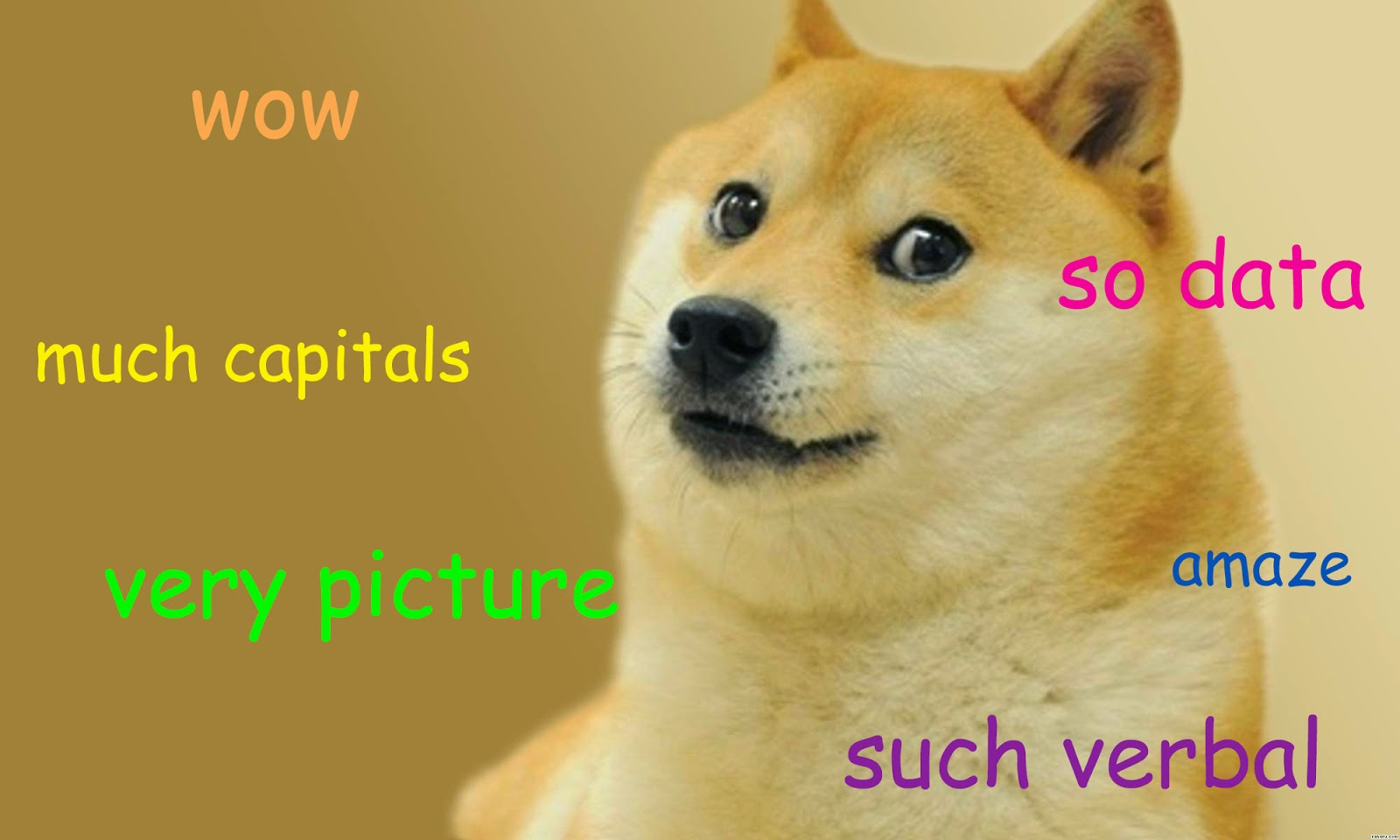 Doge is pleased with your fancy Org-mode report
